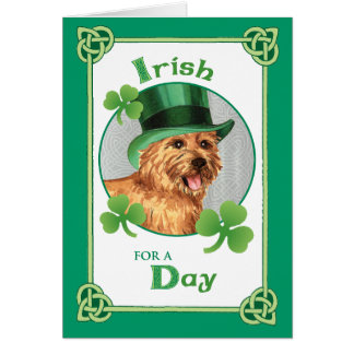 St. Patrick's Day Norwich Terrier Greeting Card