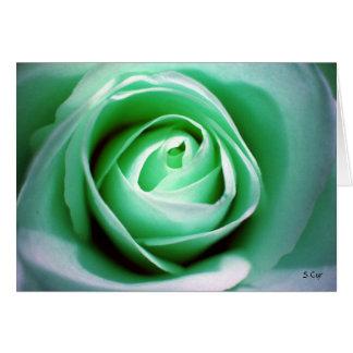 St. Patrick's Day, S Cyr Card