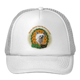 St Patricks - Pot of Gold - Chinese Crested -Kahlo Trucker Hat