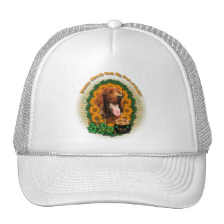 St Patricks - Pot of Gold - Irish Setter Trucker Hat
