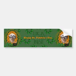 St Patricks - Pot of Gold - ShihPoo - Maggie Bumper Sticker
