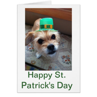St. Patrick's Puppy Card
