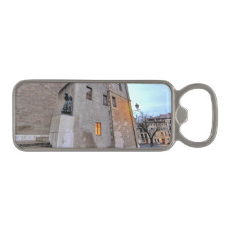 St-Pierre Cathedral in Geneva Switzerland Magnetic Bottle Opener