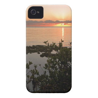 Stability at Key Biscayne Case-Mate iPhone 4 Cases