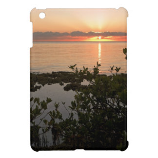 Stability at Key Biscayne iPad Mini Cover