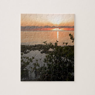 Stability at Key Biscayne Jigsaw Puzzle