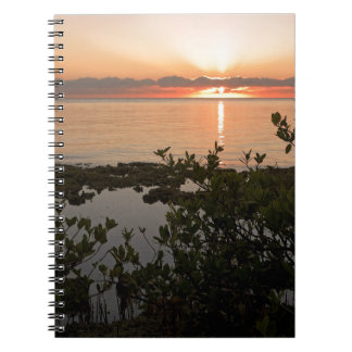Stability at Key Biscayne Notebooks