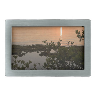 Stability at Key Biscayne Rectangular Belt Buckles