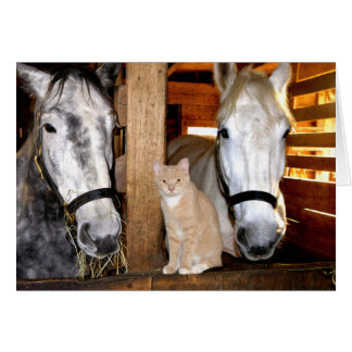 """Stable Buds"" Greeting Card"