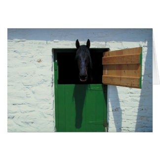 Stabled Horse with French Door Card