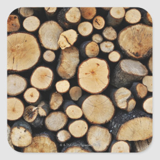 Stack of tree logs square sticker