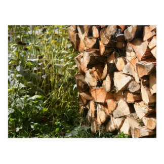 Stacked Firewood Nature Photography Postcard