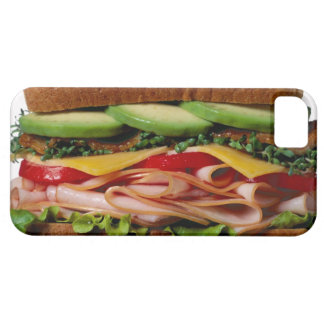 Stacked sandwich iPhone 5 case