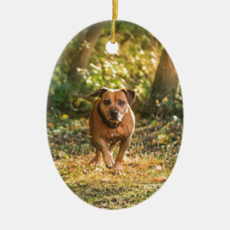 Staffordshire bull terrier ceramic ornament
