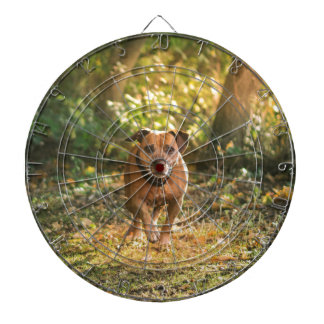 Staffordshire bull terrier dartboard