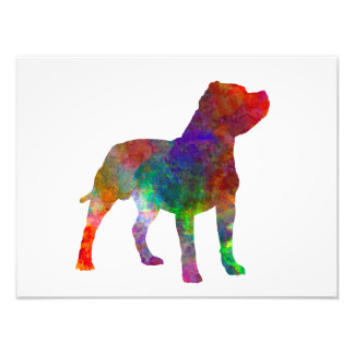 Staffordshire Bull terrier in watercolor Photo Print