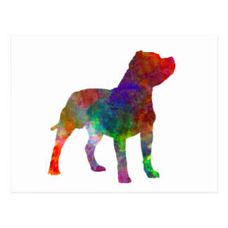 Staffordshire Bull terrier in watercolor Postcard