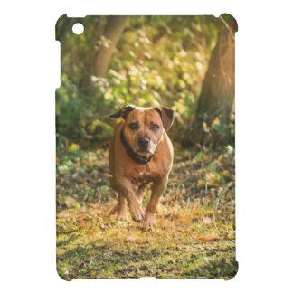 Staffordshire bull terrier iPad mini cases
