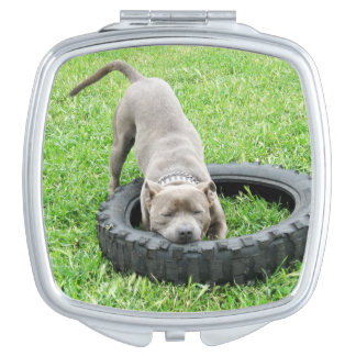 Staffordshire Bull Terrier, Ladies Compact Mirror