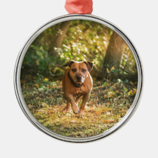 Staffordshire bull terrier metal ornament