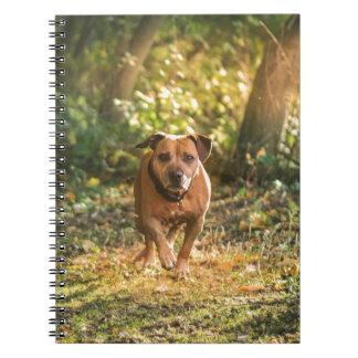 Staffordshire bull terrier notebook
