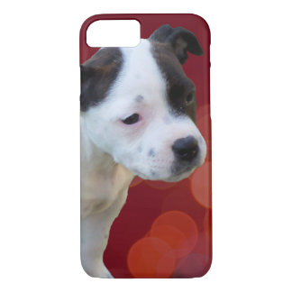 Staffordshire Bull Terrier Puppy, Case-Mate iPhone Case