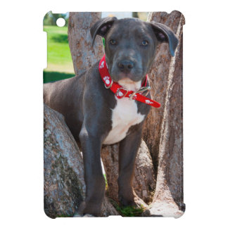 Staffordshire Bull Terrier puppy in a tree iPad Mini Cover
