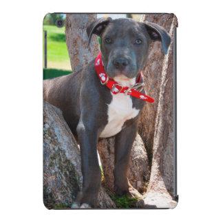 Staffordshire Bull Terrier puppy in a tree iPad Mini Retina Covers