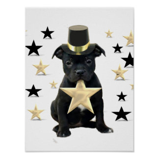 Staffordshire bull terrier puppy poster