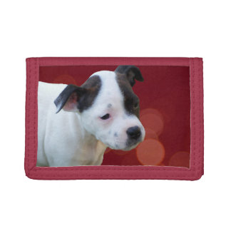 Staffordshire Bull Terrier Puppy, Trifold Wallet. Tri-fold Wallet
