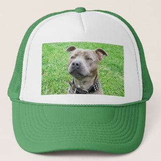 Staffordshire Bull Terrier Sitting, Trucker Hat