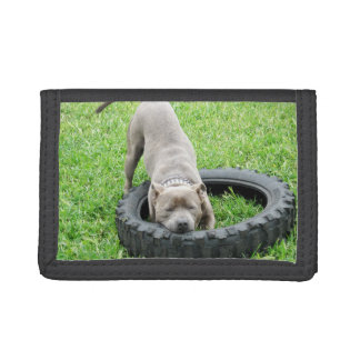 Staffordshire_Terrier_TriFold Nylon Wallet
