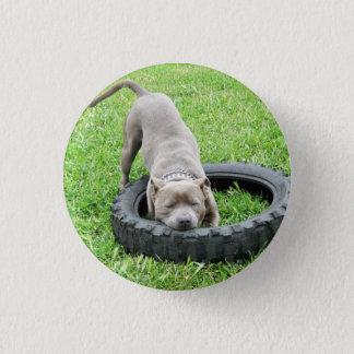 Staffy Play Time, Button Badge.