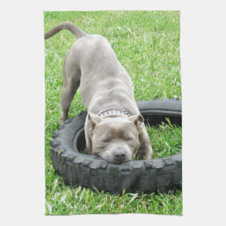 Staffy_Playing_With_Tyre_High_Quality_Dish_Towel. Towel