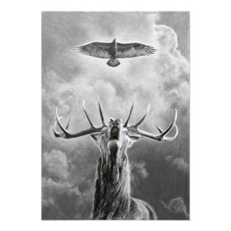 Stag and Eagle Photo Print