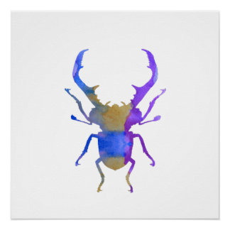 Stag Beetle Poster