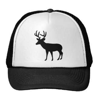 Stag Hat