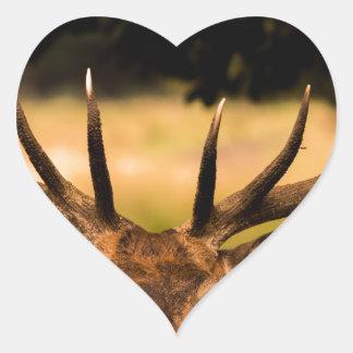 stag of richmond park heart sticker