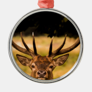 stag of richmond park metal ornament