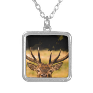 stag of richmond park silver plated necklace