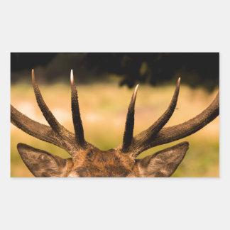 stag of richmond park sticker