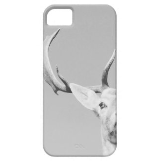 Stag prints stay Deer iPhone 5 Cases