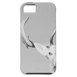Stag prints stay Deer iPhone 5 Cover