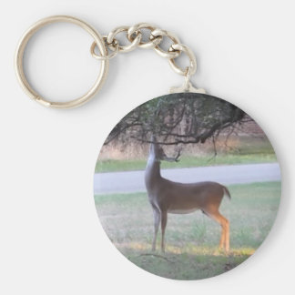 Stag Tangles Antlers Basic Round Button Keychain