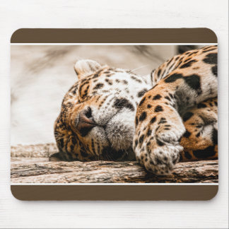 stained cat mouse pad