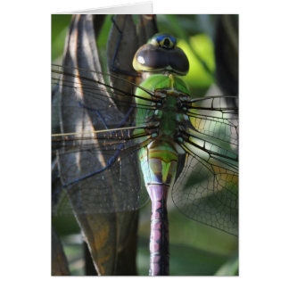 Stained Glass - Dragonfly Happy Birthday Card
