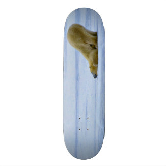 Stained Wood Polar Bear Slide Custom Park Board Skateboard