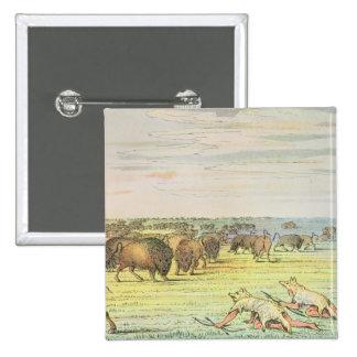 Stalking buffalo 2 inch square button