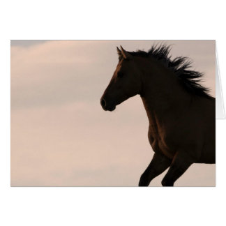 Stallion Runs at Sunrise Wild Horse Greeting Card