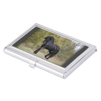 Stallion Strut Business Card Holder